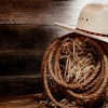 GO WESTERN SUNDAY - ONE SERVICE ONLY @ 10:31 AM